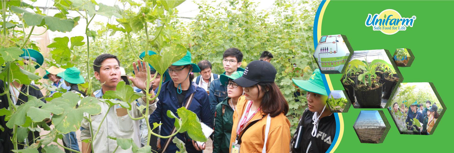 Unifarm hướng dẫn sinh viên tham quan nhà kính