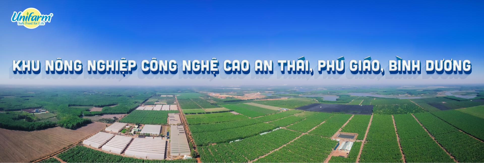 Unifarm – Khu nông nghiệp công nghệ cao An Thái